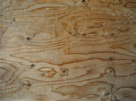 picture light wood texture