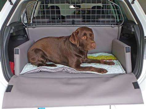 kofferraumausbau der ideale hundetransport