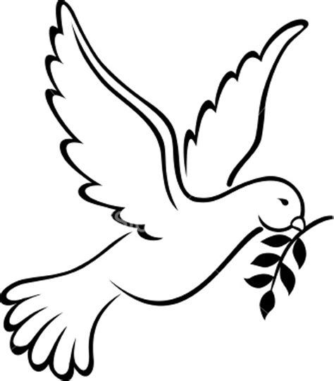holy spirit dove drawing    clipartmag
