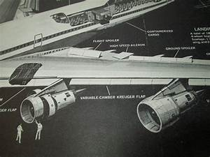 Pan Am Boeing 747 Cutaway Diagram Poster  Popular Mechanics