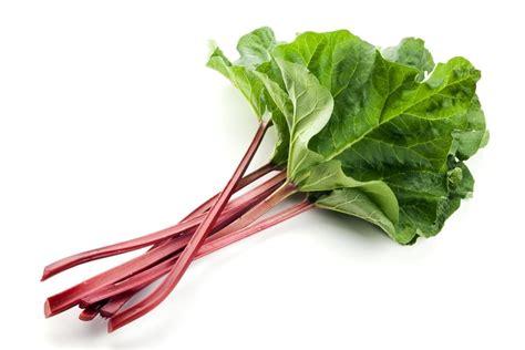 comment cuisiner la rhubarbe tout sur la rhubarbe la choisir la cuisiner la