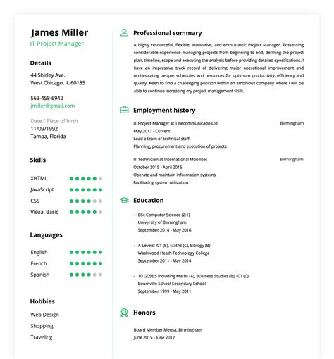 resume builder create  perfect resume   minutes