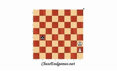 21a Chessendgames