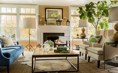 gorgeous large house plant transitional living room