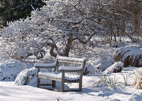 landscaping in winter winter landscaping tips westwood ground maintenance