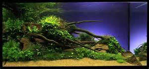 aquarium decoration ideas interiordecodir