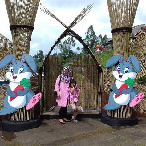 wisata taman kelinci rumah hobbit pujon  wajib