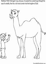 Sheets Coloring Camel Bible Needle Sunday Sheet Camels Thomas Spanish Colors Journaling Moose Doubting Preschool sketch template