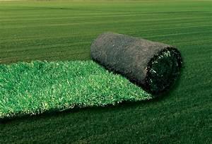 Gazon En Plaque : pourquoi choisir du gazon en plaques jardin minute ~ Premium-room.com Idées de Décoration