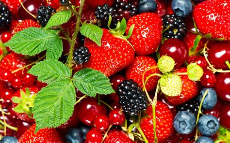 berry hd wallpaper background image  id