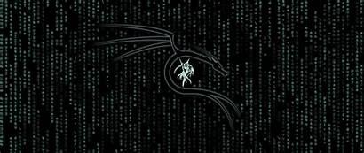Kali Linux Matrix 4k Wallpapers Desktop Resolution
