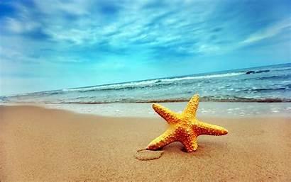 Sea Desktop Wallpapers Travel Beach Pixelstalk Sydney