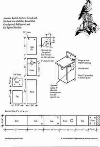 Help A Habitat - Build a Bird House - Kestrel and Screech