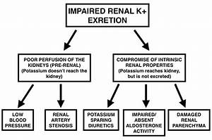 A Guide To Hyperkalemia