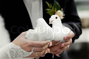 Bride and groom holding white doves in their hands at ...
