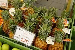 Plant D Ananas : d finition ananas ananas comosus futura plan te ~ Melissatoandfro.com Idées de Décoration