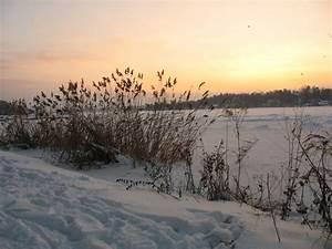 Steine Vor Der Haustür : winter vor der haust r foto bild jahreszeiten winter ~ A.2002-acura-tl-radio.info Haus und Dekorationen