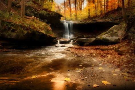 phenomenal images   national park foundations