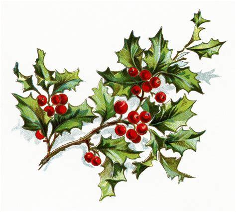 Vintage Christmas Holly Clip Art