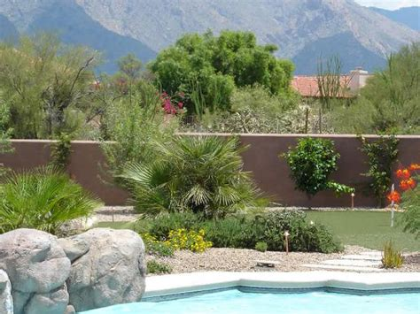 landscaping in az ideas for landscaping guide arizona pool landscaping ideas