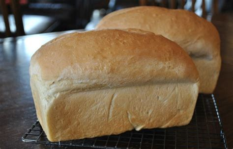 how to make bread 50 extraordinary homemade bread recipes one green planetone green planet