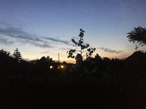 Der Garten Im August by Der Garten Im August Was Neben Der Ernte Noch Ansteht