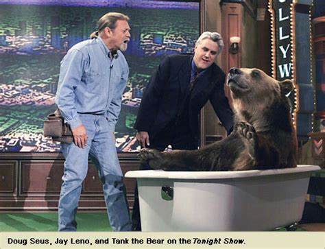 tank  bear wasatch rocky mountain wildlife