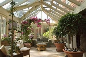 Pflanzen Kübel : kletterrosen im k bel pflanzen und im wintergarten stellen ~ Pilothousefishingboats.com Haus und Dekorationen