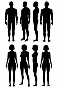 Set Of 3d Wire Frame Human Body Vector Illustration  Front