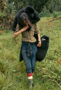 email reminder dian fossey secrets in the mist national geographic for