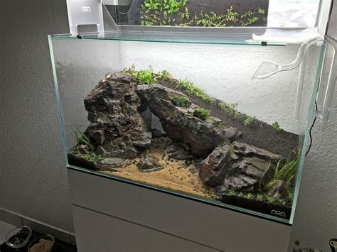 Aquascaping Supplies by 17 Best Images About Aquarium On