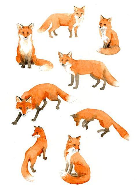 ideas  fox  pinterest foxes simple