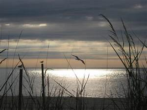 114 best images about Rehoboth Beach Delaware on Pinterest ...