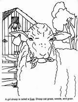 Sheep Kolorowanki Owce Coloring Industry American Knitting sketch template