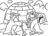 Igloo Coloring Pages Penguins Winter Getcoloringpages sketch template