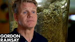 'High As A Kite' Owner Shows Gordon His Medicinal Marij ...
