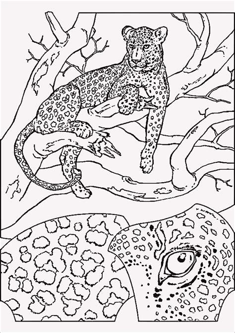 ausmalbild tiere bauernhof aufnahme ausmalbilder wal
