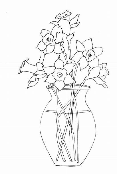 Daffodil Daffodils Coloring Vase Drawing Flower Flowers