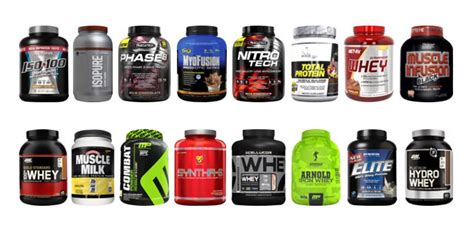 What are The Different Types of Whey Protein Powder?