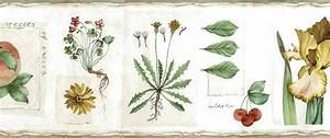 Botanical Vintage Wallpaper Border Floral Fruit Cream Green