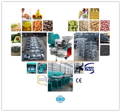 best sales melon seed processing machine cold press machine buy press machine