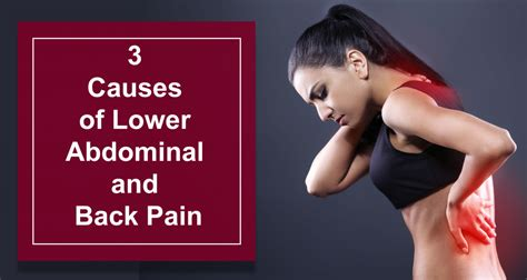 3 Causes Of Lower Abdominal And Back Pain In Females And ...