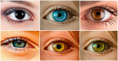 what does my eye color say about me scientists say your eye color can tell a lot about your
