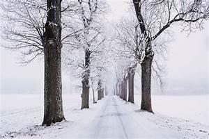 Snow Images · Pexels · Free Stock Photos