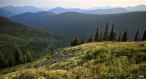 colville national forest  sights  sites  america