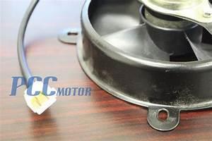200cc Chinese Atv Wiring