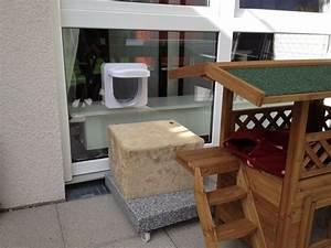 Katzenklappe In Fenster : katzenklappe in doppelvergastes fenster katzen forum katzengehege pinterest katzen ~ Orissabook.com Haus und Dekorationen