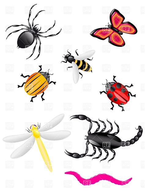Insect Clipart Bugs And Insects Clipart Clipart Suggest