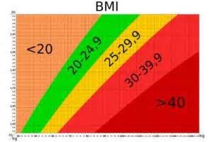 adipositas laut bmi rechner und bmi tabelle krankde