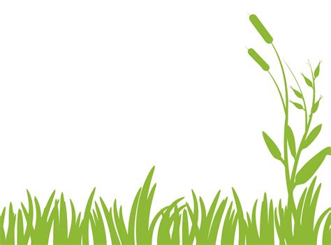 Clipart Grass Green Grass Clipart Free Stock Photo Domain Pictures
